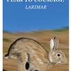 精霊動物 ウサギについて