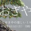 1/20(月)おぎや with a @豊洲