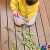 2歳1ヶ月の成長記録