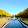 フラフラと昭和記念公園
