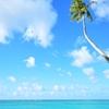 3歳児連れハワイ旅行記(1)始めての飛行機、旅行前の準備で快適空の旅