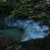 【73-2】『水のかたち』宮本 輝 著 《下巻》