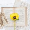 本を読む習慣・本にまつわる思い出話など