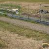 畑作業再開への一歩