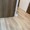 猫ルーム解体