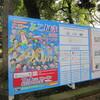 横浜中区民祭りハローよこはま2017行ってきたよ!(イベント)日本大通り駅周辺イベント情報口コミ評判