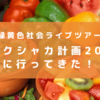 緑黄色社会ライブレポ!リョクシャ化計画2018@渋谷クアトロ参戦!