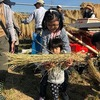 10月21日 2018親子農業体験