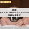 【重要】赤ちゃんと犬の事故から守る3つのポイント【事前に準備を】