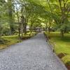 京都ではお寺の参道や小道にも癒されます!【息をのむ美しさ5選】