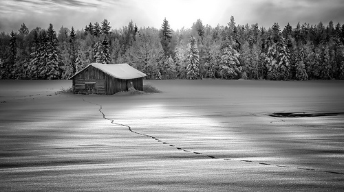 冬の時代にすべきこと