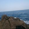 2月28日 生月1のハエ クロ釣り