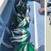千葉県大原沖で青物ルアー釣り