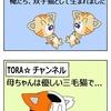 【猫漫画】そもそも、母ちゃんが三毛猫だった