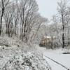雪の中、良くも悪くも様々に