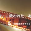 【映画】「怪物」に救われた、あの夏【怪物はささやく】
