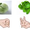 野菜が識別できないんです