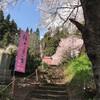 4月22日(月)お天気良く、今日も桜探訪