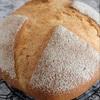 大型の食事パン