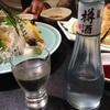 菊正宗 樽酒(兵庫県 菊正宗酒造)