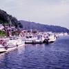 【滋賀県】琵琶湖に浮かぶ猫がいる沖島に行ってきた。