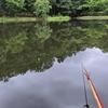 富沢の池25