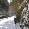 氷瀑トレッキング下見~御船の滝編~