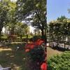豊中の市花,バラ☆豊島(てしま)公園