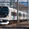 1/25 E257系0番台M-107編成 臨時回送(NN入場・・・?)
