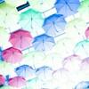 面白い傘を集めました!見ているだけでも楽しめるユニーク傘たちです。
