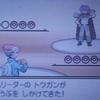 【ポケモンプラチナ】ハルヤのポケモン日記4th 9日目~vsトウガン~
