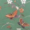 帰蝶様の、蝶々の着物