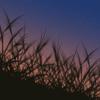 【イラスト】影のイラスト。簡単に描けるよー。