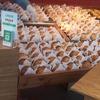焼きたてカスタードアップルパイ:RINGO(りんご) りんご好きな人への手土産