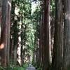 長野旅行記 2019年8月 戸隠神社を巡る②奥社、九頭龍社までの道のり。クマスギの並木を抜けた先にある御神徳。