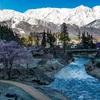 白馬村、春の朝の冷えた空気が好き。