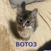 Lambda内で利用されるboto3のバージョンを調べてみた
