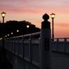 夕暮れの竹島海岸 2014 1月