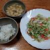 キャベツと人参のシーチキン炒めとキャベツとジャガイモの味噌汁