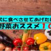 犬に食べさせてあげたい夏野菜おススメ10選【愛犬家必見】