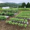 日曜日の午後は、チャレンジ農業の講習会