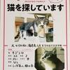 【エムPの昨日夢叶(ゆめかな)】第1706回『日本一の賑わいをみせる「海老名S.A」で脱走した猫さんが戻ってきた奇跡の夢叶なのだ!?』[11月8日]