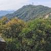 YAMAPの山の日記念川柳が面白い(^^)