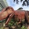 Dinoイベントへ