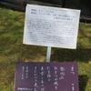 万葉歌碑を訪ねて(その1167)―奈良市春日野町 春日大社神苑萬葉植物園(127)―万葉集 巻二 一四一