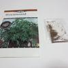 ニガヨモギ(ワームウッド)の種を蒔く