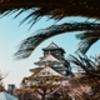 関西にある人気中高一貫校一覧!おすすめの中学校も紹介!