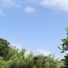 昭和のU Rに夏がやってきた。