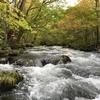 2017.10.12-14 青森の自然を満喫する旅行 DAY2(岩木山、奥入瀬、酸ヶ湯)