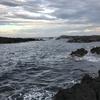 城ヶ島 東の入り 釣果 2017年7月2日